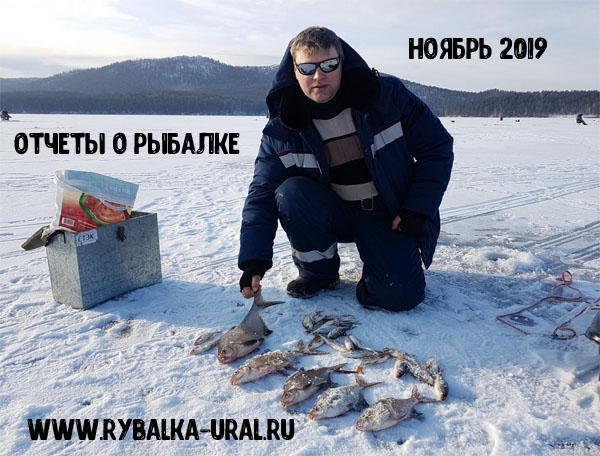otchety_rybalka_11_2019_01_2019-11-05.jpg