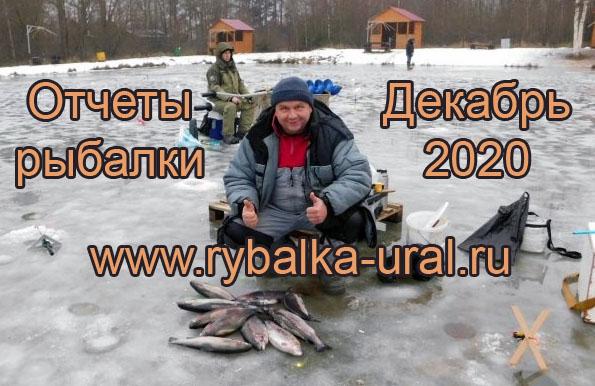 otchety_rybalki_12_2020_01.jpg